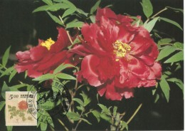 Carte Maximum - Taiwan - Formose - Flowers - Fleurs - Paeonia Suffruticosa - 1945-... Repubblica Di Cina