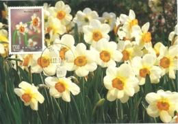 Carte Maximum - Taiwan - Formose - Flowers - Fleurs - Narcissus Poeticus - 1945-... Repubblica Di Cina