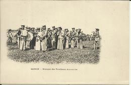 * SAIGON , Musique Des Tirailleurs Annamites , CPA ANIMEE - Vietnam