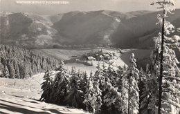 WINTERSPORTPLATZ-PUCHENSTUBEN-REAL PHOTO-1950 - Scheibbs