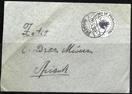 621 - ALBANIA - 1913 - REVOLUTIONARY ISSUES - COVER - FORGERY, FALSE, FAKE, FAUX, FALSO, FALSCH - Briefmarken