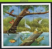 Nff201b FAUNA VISSEN VOGELS PAD BUTTERFLIES TOAD REPTILE TURTLE FISH OTTER DUCK CHIPMUNK BIRDS FISH ZAMBIA 1999 PF/MNH - Briefmarken