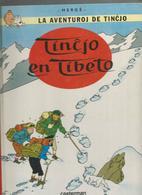 BD. Tintin  En Esperanto, Tincjo En Tibeto ,Hergé , Ed. Casterman, 2005 - Livres, BD, Revues