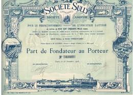 Titre Ancien -Société Sully- Société Anonyme Pour Le Perfectionnement De L'Industrie Laitière -Titre De 1908 - Déco - Agriculture