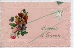 ESSON SOUVENIR CARTE GAUFREE  TRES RARE - France