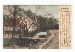 Puers-Calfort  Zicht In Coolhem  Vue à Coolhem 1902 - Puurs