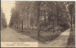 VORSSELAER (VORSELAAR) - Kasteeldreef - Drève Du Château - Vorselaar