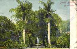 Jardin Botanique De Orotava Colorisée RV - Tenerife