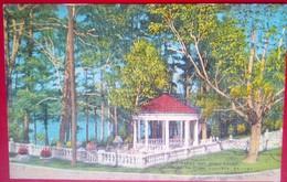 Augusta Gardens  Linen - Augusta