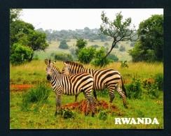 RWANDA - Zebras In Akagera National Park Used Postcard As Scans - Rwanda