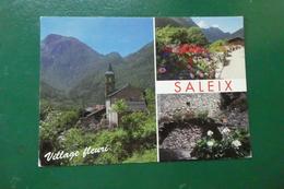 VV ) SALEIX - Sonstige Gemeinden