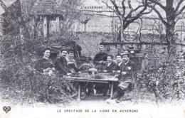 63 - Puy De Dome - RIOM - Le Greffage De La Vigne En Auvergne - - Riom