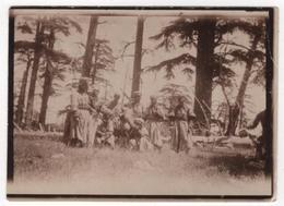 LIBAN Photo Originale LEBANON Militaria Soldats Corvée De Bois Dans La Forêt De Cêdres 1918 - Guerre, Militaire