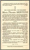 Dp. Mertens Maria. ° Puurs 1860 † Booischot 1940 - Godsdienst & Esoterisme
