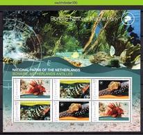 Nff210c FAUNA VISSEN NAAKTSLAK NATIONAL PARC NUDIBRANCH FISH FISCHE POISSONS MARINE LIFE GRENADA 2009 PF/MNH - Fishes