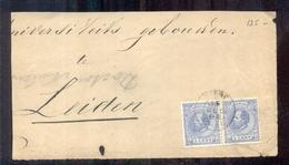 Leiden - Paartje NVPH 19 - 15 DEC 90 - Poststempels/ Marcofilie