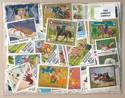 OFFER   Lot Differents Theme / Topics - Paqueteria  1000 Diferentes Fauna  - U - Mezclas (min 1000 Sellos)