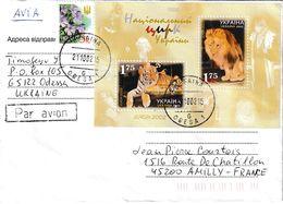 Ukraine. Lion. Tigre. Lettre Pour La France - Roofkatten