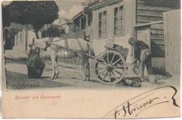 Roumanie Saludari Din Constanta - Roumanie