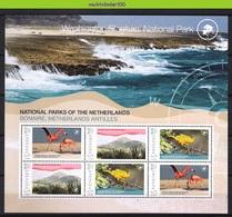 Nff216c FAUNA VOGELS FLAMINGO CACTUS? NATIONAL PARC BONAIRE BIRDS VÖGEL AVES OISEAUX GRENADA 2009 PF/MNH - Birds