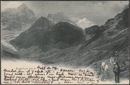 Sustenhorn Und Sustenpass, Bern, 1905 - Wehrli AK - BE Berne