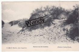 Kalmphout (duinen Aan De Cambus) Uitg. Hoelen N° 1668 - Kalmthout
