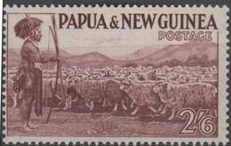 Moutons - Papouasie Et Nouvelle-Guinée - Ferme