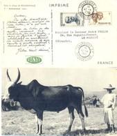 MADAGASCAR TANARIVE R.P. TàD 12-4-1955 PUB IONYL LABORATOIRES LA BIOMARINE - CARTE ZÉBU - - Madagascar (1889-1960)