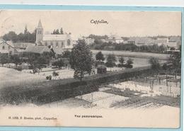 Cappellen : Vue Panoramique - Kapellen