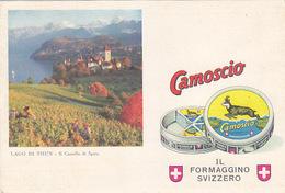 Camoscio - Il Formaggino Svizzero        (P-194-70914) - Advertising