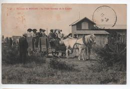 ENVIRONS De ROYAN (17) - LE TRAM FORESTIER DE LA COUBRE - TRAMWAY A CHEVAL - Francia
