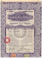Titre Ancien - Compañia Minera Nazareno Y Anexas En Temascaltepec Estado De Mexico - Sociedad Anonyma - Titulo De 1910 - Mijnen