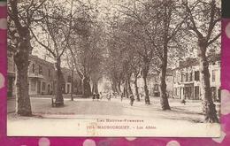 D65 - MAUBOURGUET - Les Allées - Maubourguet