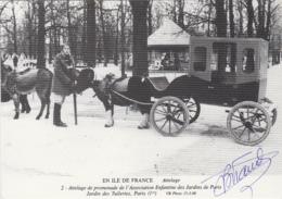 Métiers - Série En Ile-de-France - Attelage Poney Association Enfants Jardins Tuileries Paris - Autographe Bernard Viaud - Mestieri
