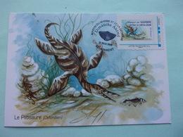 Animaux Préhistorique Pliosaure Rinxent La Maison Du Marbre Et De La Géologie MonTimbraMoi - Francobolli