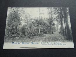 Belgique  België  ( 1709 )   Kluisberg  Kluisbergen  Mont De L' Enclus  Orroir Entrée Du Parc Calmont - Kluisbergen