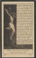 DP. BENIGNUS VAN BASTELAERE ° DOORSLAAR - + 1925 - 78 JAAR - Religion & Esotérisme