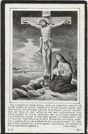 DP. JOZEF WILMS ° POEDERLE 1860 + MERXPLAS 1925 - Godsdienst & Esoterisme