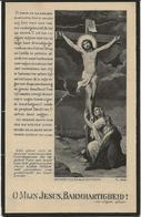 DP. LUDOVICUS VAN PELT ° TILBURG 1856- + BERCHEM 1929 - Religion & Esotérisme