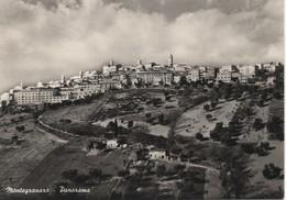 Montegranaro - Panorama - Ascoli Piceno