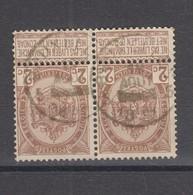 COB 55 En Paire Oblitération Centrale BRUXELLES 5 Heure Barrée - 1893-1907 Coat Of Arms