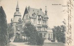 Hoogboom - Hortensia Hof -  H991  - 1903 - Kapellen