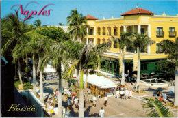 Kt 615 / Naples - Naples