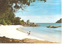 BEACH AT PRASLIN, SEYCHELLES - Seychellen