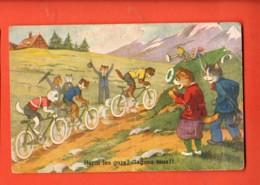 KAH-31 Animaux Humanisés Course à Vélo, Cyclisme, Tour De France. Circulé Sous Enveloppe Depuis Angoulème En 1946, - Animales Vestidos