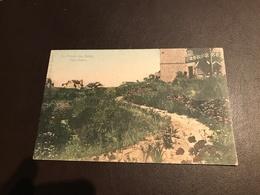 De Panne - La Panne - La Panne-les-Bains - Dune Fleurie - Edit. H. Ruyssen - Gelopen 1905 - Ingekleurd - De Panne