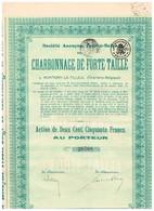Titre Ancien - Société Anonyme Franco-Belge Du Charbonnage De Forte-Taille - Titre De 1927 - Mijnen