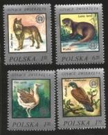 V) 1977 POLAND, WILDLIFE PROTECTION, WILDLIFE FUND EMBLEM AND, GREAT BUSTARD, KESTREL, WOLF, MNH - Unused Stamps