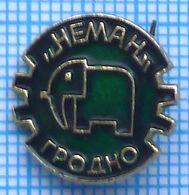 USSR / Badge / Soviet Union / Belarus. Glassworks Neman. Elephant. Grodno. - Animali