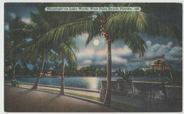 LAKEWORTH WEST Palm Beach FL Moonlight View Palm Trees Postcard 1940s Linen - West Palm Beach